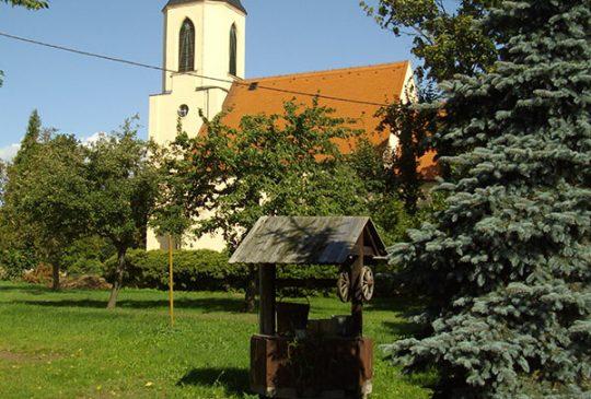 kirche-strauch_1